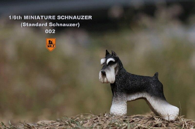 1//6 Scale Mr.Z MRZ019-002 Miniature Schnauzer Animal Dog Model Toy