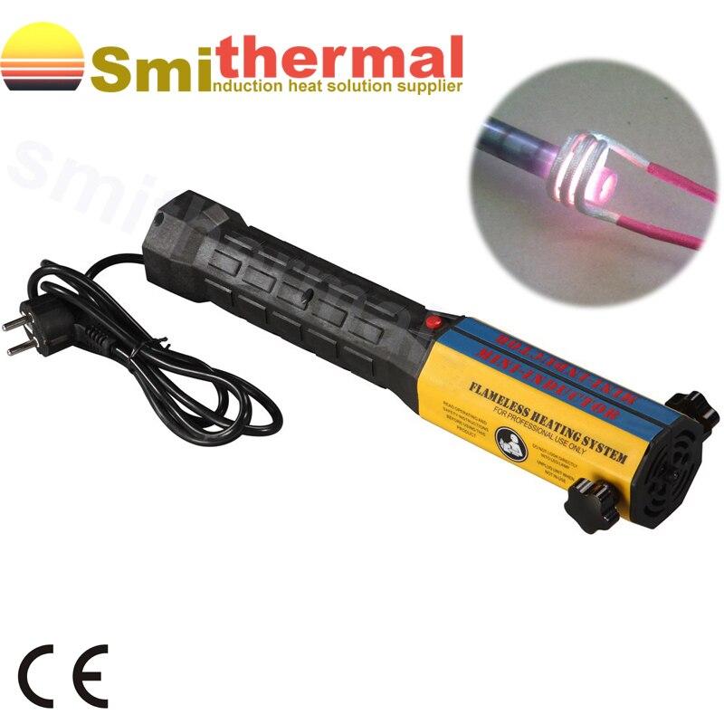 Mini ductor riscaldatore a induzione 1000 Watt 220 V + 6 Bobine kit