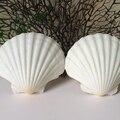 Conchas do mar naturais grande vieira branco mediterrâneo estilo sea shell Adesivo de parede do aquário acessórios de decoração para casa