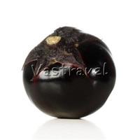 50 Pcs Round Black Eggplant Vegetable Seeds Fast-growing Heirloom DIY Home Bonsai Pot Balcony NON-GMO