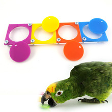 SweetDog Parrot Bird Cognitive Training Puzzle Toy 20 5cm