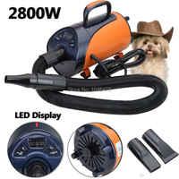 Secador de pelo portátil para perros y mascotas de 2800W secador de pelo Con 3 boquillas