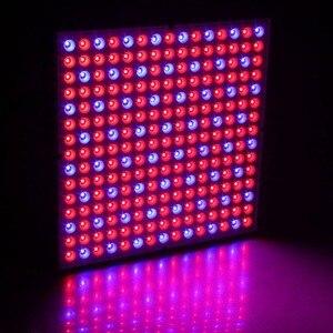 Image 3 - Tăng Trưởng Thực Vật Đèn 25W 45W Phát Triển Ánh Sáng Suốt LED Tấm Phản Quang Cúp Trong Nhà Vật Có Hoa hoa Cây Con Fitolampy