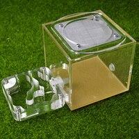T4 Design Ant Farm Acrylic Moisture With Feeding Area Insect Ant Villa Pet Advanced Mania Farm