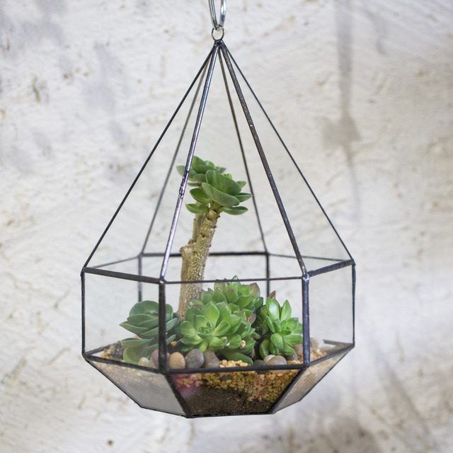 Hanging Six Surface Diamond Glass Geometric Terrarium Succulent