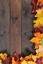 Laeacco Old Wooden Board Maple Leaves Portrait Food Photography Backgrounds Customized Photographic Backdrops For Photo Studio