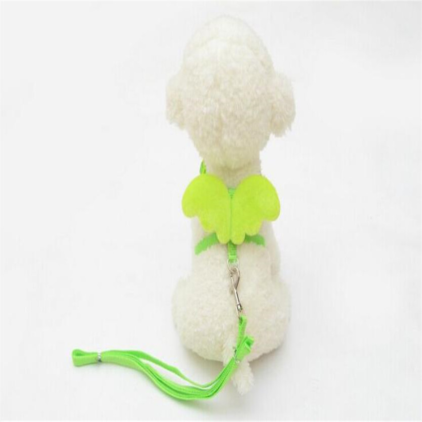1 PC Cute Angel Pet Dog Leashes and Collars Set Puppy Leads for Small Dogs Cats Designer Adjustable Dog Harness Pet Accessories in Leashes from Home Garden