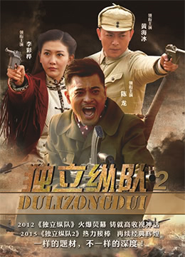 《独立纵队2》2015年中国大陆剧情电视剧在线观看