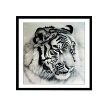 Magic Fangyuan Drill 5D DIY Diamond Sketch Tiger Embroidery Cross Stitch Mosaic Painting Decorative Gifts