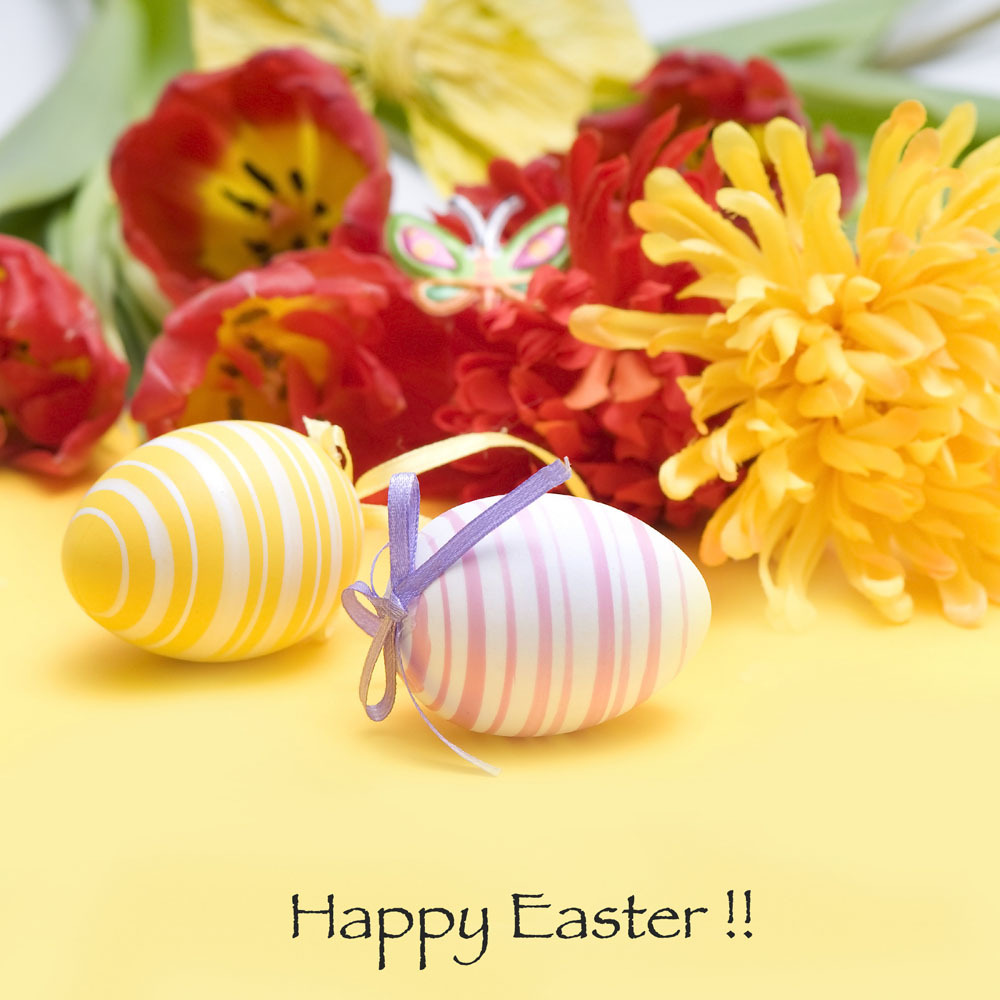 10x10ft Easter Theme Vinyl  Photography Backdrops Props Photography Studio  Background  FH-44 shengyongbao 300cm 200cm vinyl custom photography backdrops brick wall theme photo studio props photography background brw 12