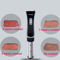 SVC 113 slow cook circulator immersion precision slow cooking stick beef steak baking processor