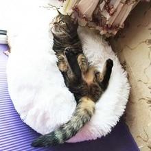 Warm, handcrafted sphynx cat Fleece / cotton blanket