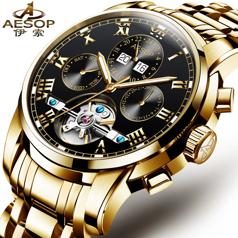 Luxury AESOP Watch Men Automatic Mechanical watches Hollow gold Male Clocks Shockproof sapplire Waterproof Relogio Masculino shuhang watch man pocket mechanical windup watches pendant hollow luxury gold carving gift fob men s women s hand winding hour