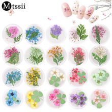 Mtssii 1 Box Colorful Real Nail Dried Flower Clover Leaf Preserved Natural Flower 3D Manicure Nail Art Decoration