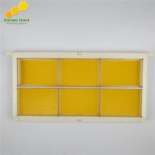 1 шт пчелиная рамка с 6 шт медовая кассета коробка и 6 шт пластиковая основа лист