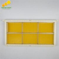 1 Uds abeja marco con 6 uds cariño caja de casette y 6 uds de fundación de la hoja
