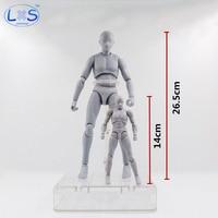 26.5cm Archetype He She Ferrite Figma Movable BODY KUN BODY CHAN PVC Feminino Action Figure Anime Collectible Model Toys