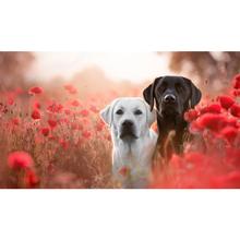 Full Square Drill 5D DIY White and black Great Dane dogs red poppies diamond painting Cross Stitch 3D Embroidery Kits  H79