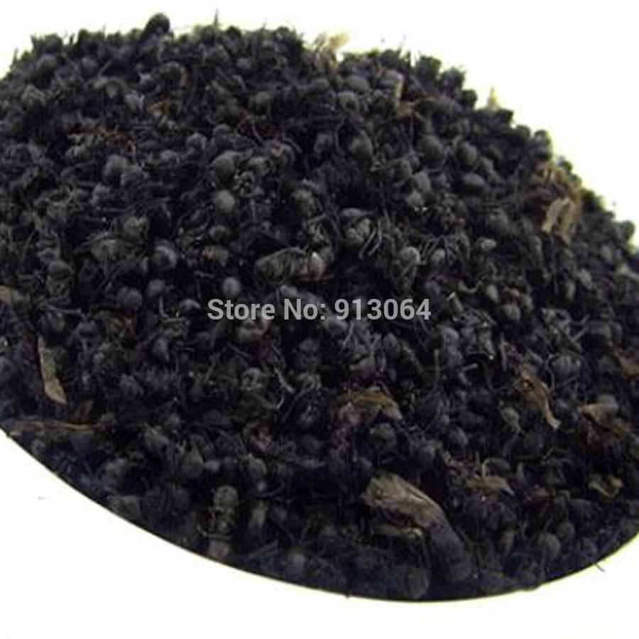 Ant extract powder
