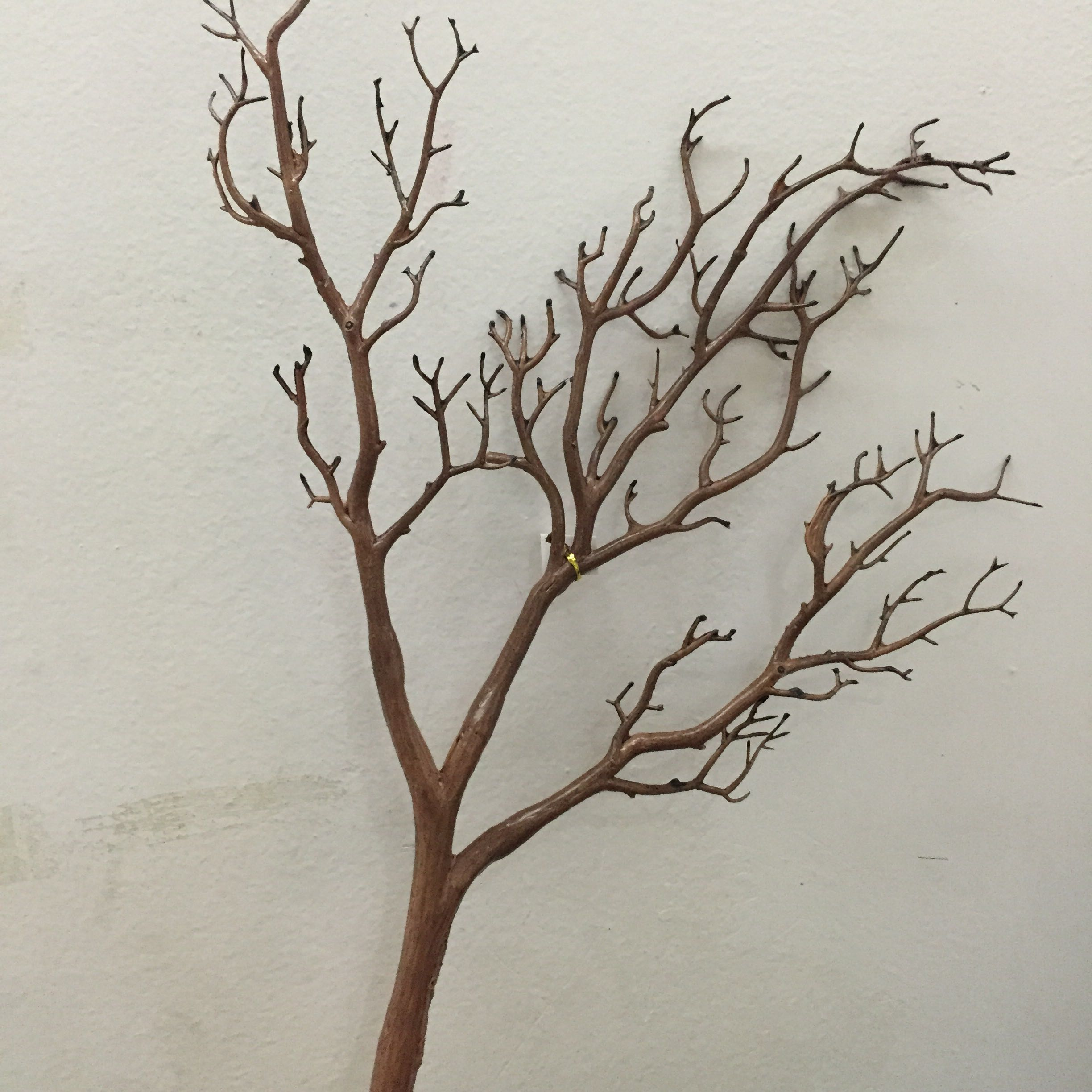 Artificial Peacock Coral Tree Branches Plastic Artificial Flowers for  Showcase Wedding Decorative Dried Tree Branches H60cm-in Artificial & Dried  Flowers ...