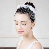 Women's Lace Net Headpiece-Wedding Special Occasion Casual Headbands Birdcage Veils 2358