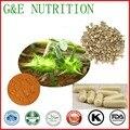 Natural Suplemento Diatery Tribulus Terrestris Cápsulas de 500 mg * 300 pcs