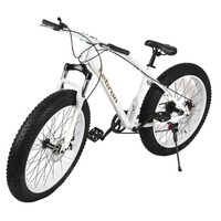 26 Inch 7 21 27speed Cross Country Mountain Bike Aluminum Frame Snow Beach 4 0 Oversized