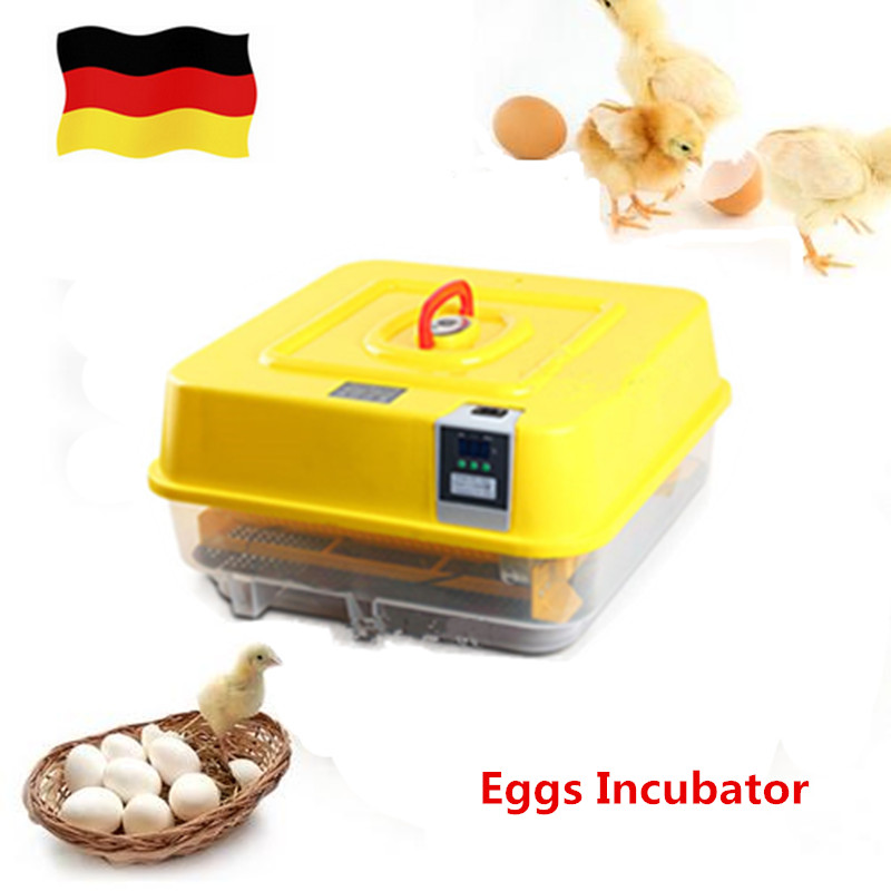 цены Mini Home Farm Use Eggs Incubator Goose Duck Turkey Egg Incubation Machine Automatic Hatcher Equipment