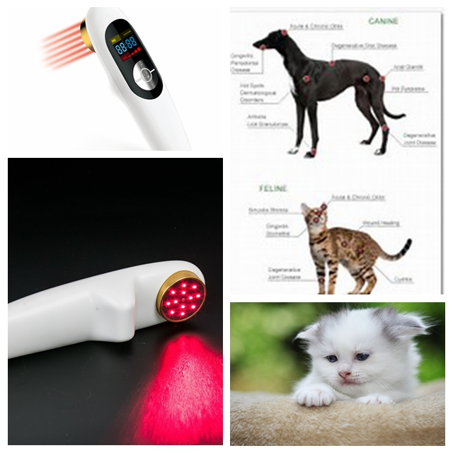 Small size laser acupuncture laser pain therapy home remedy small size sprain therapy light therapy for pain management home remedy