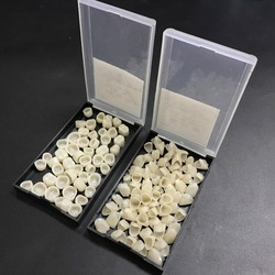 2 Packs Dental Materials Mixed Temporary Crown Anteriors Front & Molar Posterior Nature Color Teeth Dentist Products