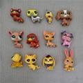 Frete grátis barato 12 pçs/lote pety littlest lps loja cat dog collie Patrol toy rare set Kawaii Figura presente para a menina Bonito Solto