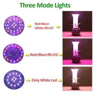 Image 4 - Temporizador usb espectro completo led cresce a luz para as plantas que crescem a lâmpada luzes de leitura interior ir vu phyto auto on/off lâmpadas de crescimento de mesa