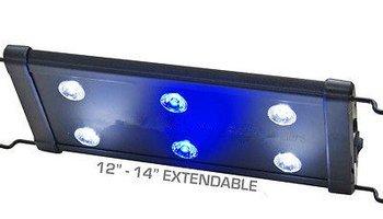 EVO 12 Luz de acuario LED Nano Marina arrecife de Coral Cichlid 6x3 W 3 vatios 30-40 cm por Odyssea