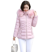 High Quality 2017 Women Winter Jacket Girls Elegant Large Fur Hooded Short Slim Cotton Padded Parkas