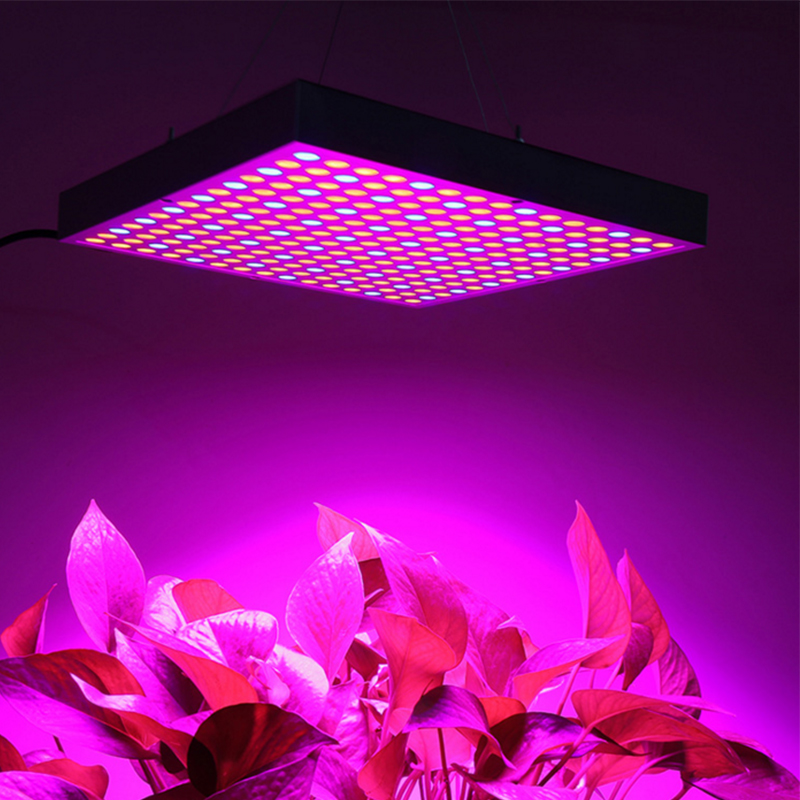 Grow Tent Lamps 1000W Full Spectrum 225 Leds Grow Light  Indoor Seedlings Phyto Lamp For Plants Hanging Growing Lamps Fitolampy