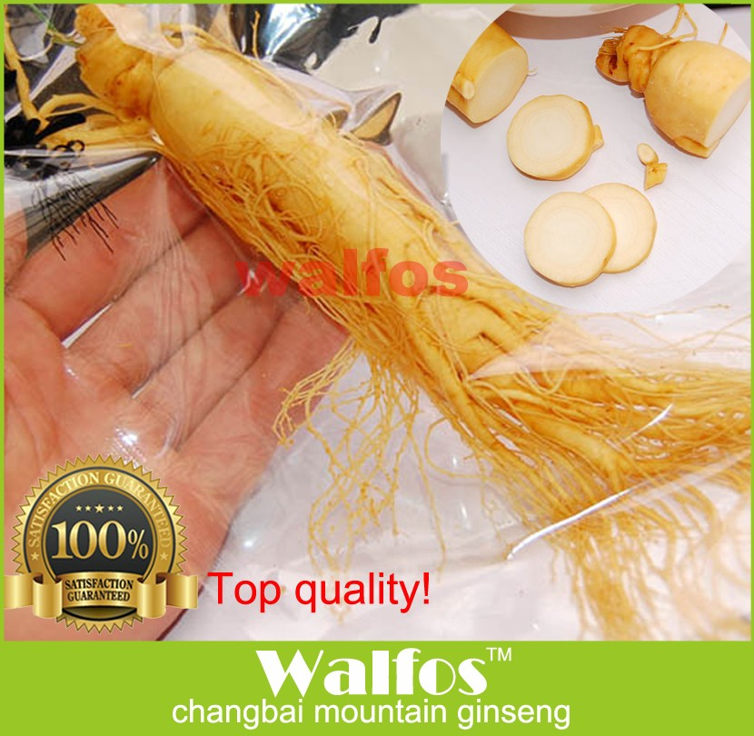 Top quality 2 bags 140g ginseng root insam changbai mountain ginseng Chinese herb panax organic fresh