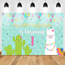 Mexican Backdrop Alpaca Cactus First Birthday Party Photo Backdrops Colour Flag Banner Light Blue Background for Pictures