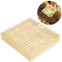 Queen Bee Rearing Cupkit Box Bee Beekeeping Tools 100Pcs Brown Cell Cups Apiculture Accessories Kit Supplies