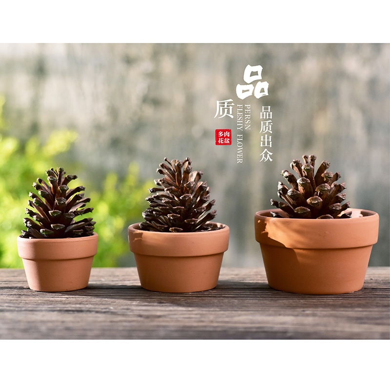 GRATIS SHIPPING! Fleshy Gardening Potter Small Potted Special Personlig Pottery Keramisk Flower Pot Square Pots.terra-cotta