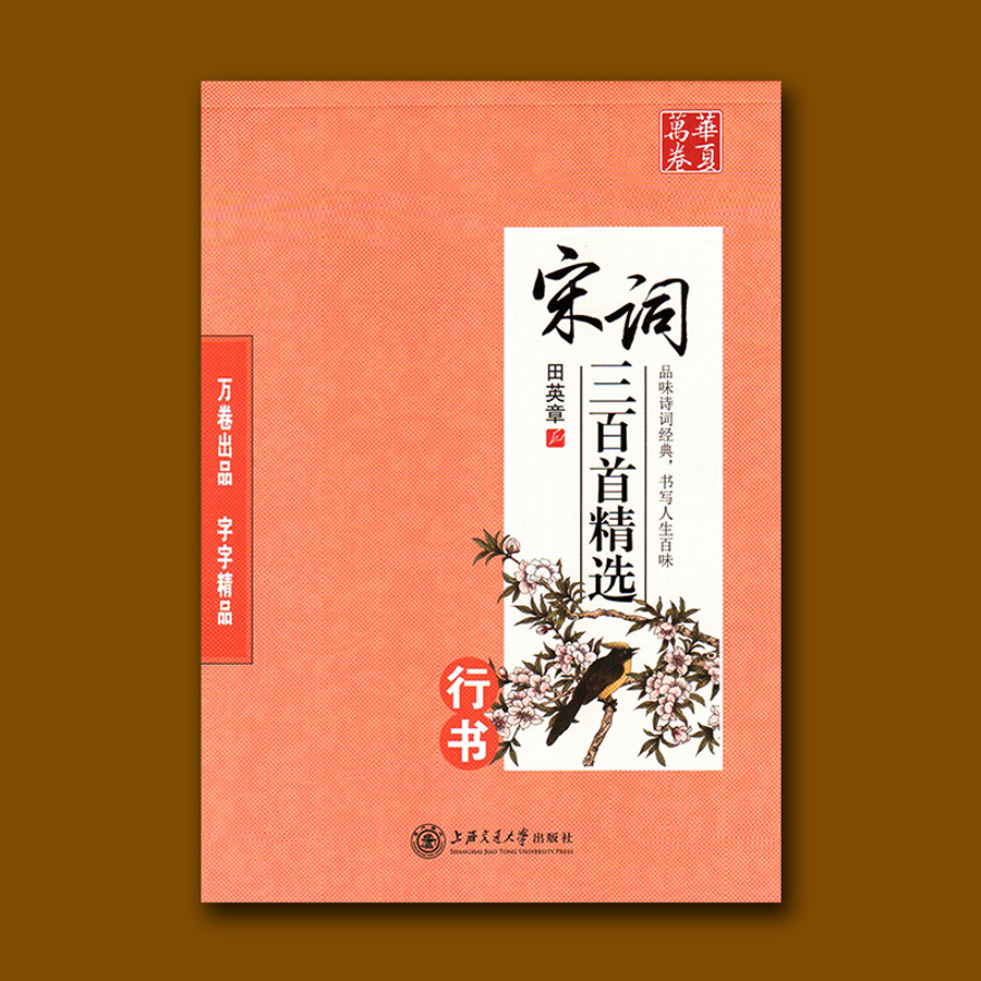 Kids Children Chinese Calligraphy Book for Pen Pencil Writting Song poetry Xingshu Copybook