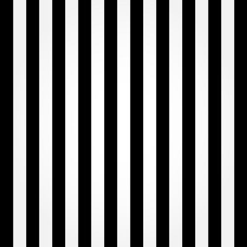 Custom vinyl print cloth black and white vertical stripes photography backdrops for photo studio portrait background props F-914 singular bulbs magic props white silver black