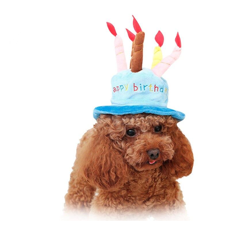 675 16 De Réductionchien Chapeau Joyeux Anniversaire Pet Casquette Chiot Chihuahua Caniche Bouledogue Français Carlin Chat Anniversaire