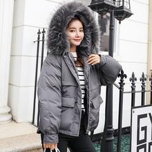 Fashion Fresh Straight Winter Women's down jacket 2018 Short Loose Thick Raccoon Fur Large Fur Collar Down Jacket Winter Wear цена