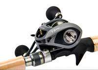 Gray Titanium Alloy Baitcasting Reels 8+1BB Fishing Reel Boat Rock Fshing 5.4:1 Lure Sea Fishing Rods Fishing Wheel 049#