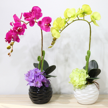 Top Qualite Toucher Papillon Orchidee En Pot Ensemble Hortensia Artificiel Soie Fleurs Bonsai Plantes Pot Culture Mariage Decor A La Maison