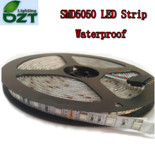 5m 300 LED SMD5050 Waterproof 12V flexible light 60 led/m,6 color strip white/warm white/blue/green/red/yellow