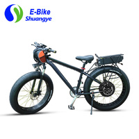 1000W powerful fat tire electric bicycle with 20AH battery Snow Bike