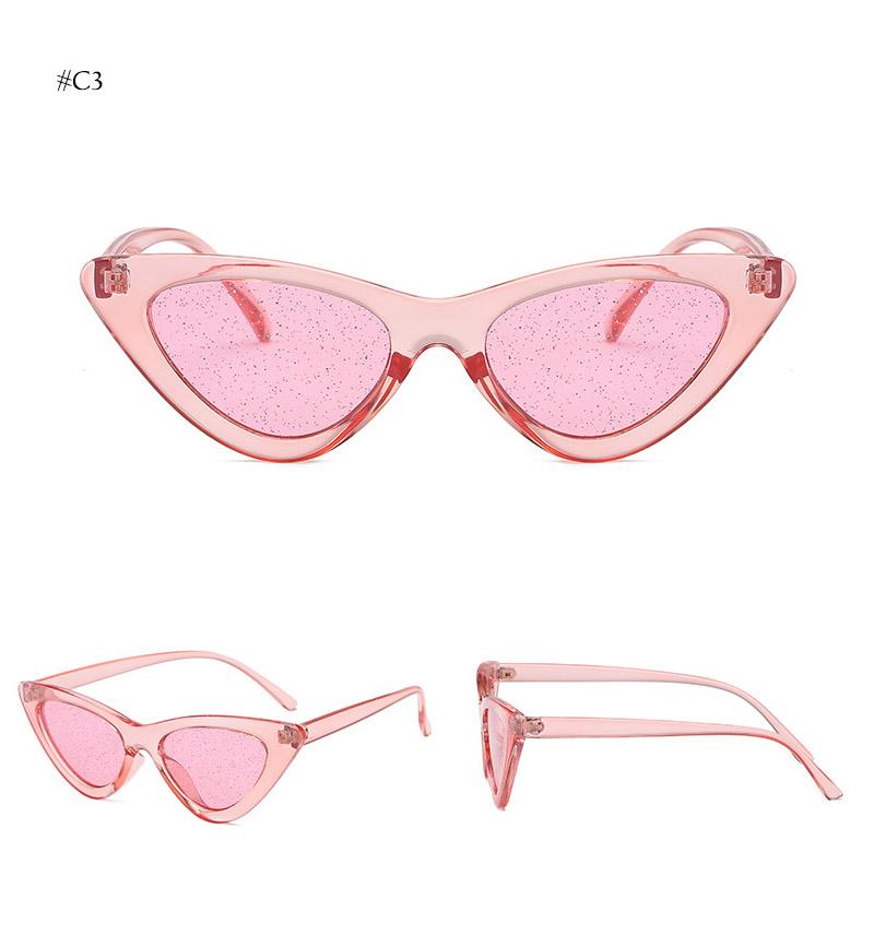 cat eye sunglasses (15)