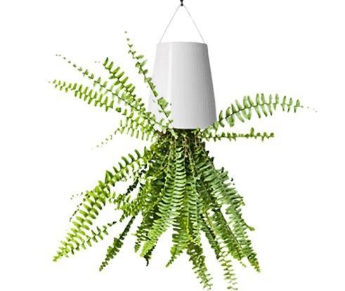 Popular Hanging Planter Baskets-Buy Cheap Hanging Planter Baskets ...