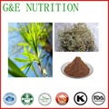 Pure Natural Hot Selling Salicin HPLC 25% White Willow Bark Extract 100g